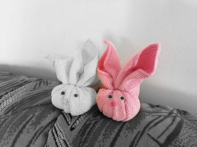 Childhood Stuffed Toy No People Indoors  Close-up Day Softness Pink Color Pink Rabbits 🐇 Chubby Bunny Soft World Without Colours Looking At Camera Spring Easter Bunny Easter Toys Millennial Pink EyeEmNewHere Innocence Hand Made For Children To
