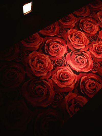 roses on the floor Carpet Red Ceruleantower JZbrat