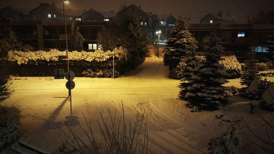 Winter Wintertime Szczecin Snow Snow ❄ Winter Zima śnieg Noc Illuminated Night Street Light No People Tree Architecture Outdoors Nature City