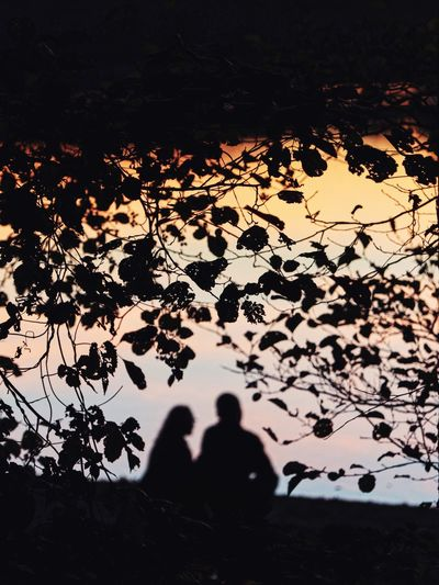 Silhouette people standing by tree during autumn