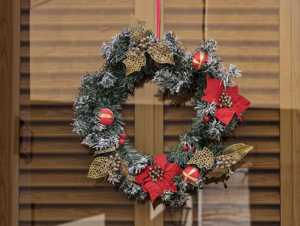 Christmas wreath with flowers Poinsettia on glass door Christmas Time Reflection Architecture Celebration Christmas Christmas Decoration Christmas Lights Christmas Ornament Christmas Tree Christmas Wheat Close-up Day Decoration Door Glass Hanging Indoors  Nature No People Poinsettia Flower Tradition Wood - Material