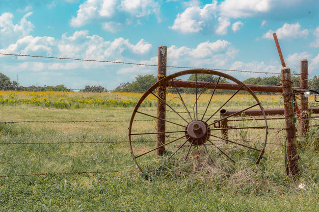 A lazy day on the farm. Agriculture Bale  Beauty In Nature Cloud Cloud - Sky Cloudy Day Farm Farm Life Field Grass Grassy Growth Hay Horizon Over Land Landscape Nature No People Non-urban Scene Outdoors Rural Scene Sky Tranquil Scene Tranquility Wheel