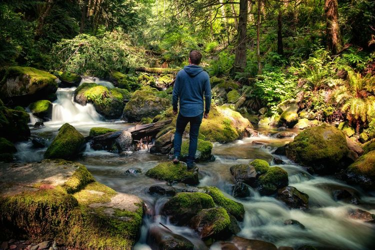 Rear view of man standing on rock in river