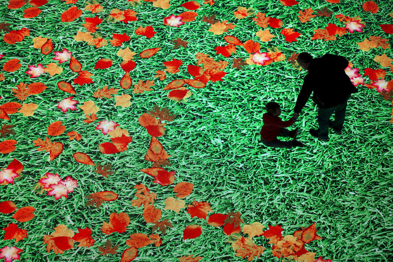 The large screen of augmented reality is felt on the floor. Digital Light Canvas, people with their children have fun on screen with a picture of a meadow with green grass and flying autumn leaves Green Color Two People Experience Fun Reality Screen Interactivity Digital Technology Floor Futuristic Future Generations Monitor Progress Virtual Activity Moving Lighting Clip Modern Real People Togetherness Family Positive Emotion Humanity Meets Technology Moms & Dads