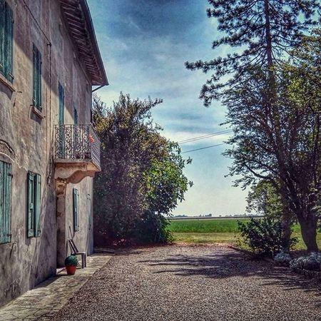 SanMartinoInRio Trignano Campagna Estate2015 agosto gippix