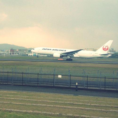 Airplane Sky Park 飛行機