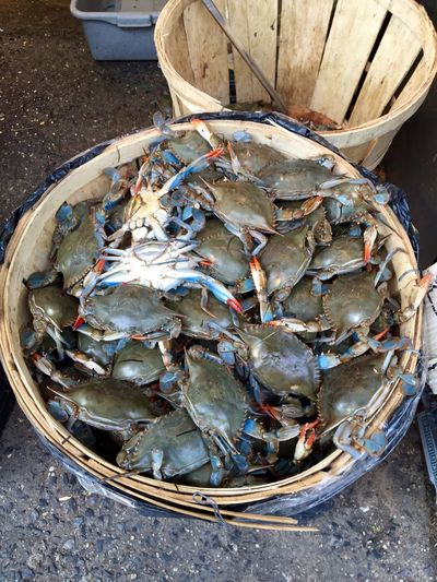 Afrodisiac Colorful Crabs Chinatown Chinatown New York Fresh Food I Love Seafood Chupe De Camarones Chupe De Cangrejos I Love Cooking