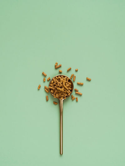 High angle view of breakfast on white background