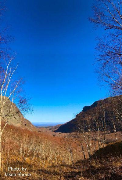 长白山北景区 Heaven's Lake Tree Mountain