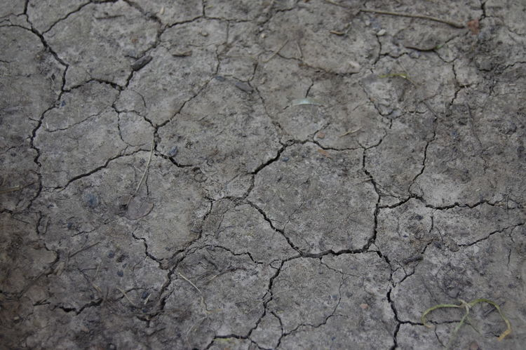 Arid Climate Backgrounds Barren Clay Close-up Cracked Dividing Drought Dry Environment Environmental Issues Full Frame Geology Global Warming Land Landscape Mud Nature No People Pattern Physical Geography Rough Summer Textured  Weather Perspectives On Nature