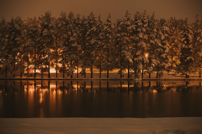 Lake in winter night EyeEm Best Shots EyeEm Nature Lover Beauty In Nature Coniferous Tree Lake Mountain Nature Night Outdoors Reflection Srbija Tranquil Scene Tree Water Waterfront