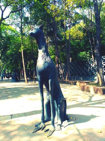 Gats Df MéxicoD.F. Movilephotography Personal Perspective Art Is Everywhere Cat♡ Cats 🐱 Cats Of EyeEm Gatto😸 Escultura