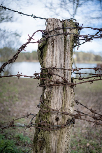 Barbed wire on wooden fence against sky