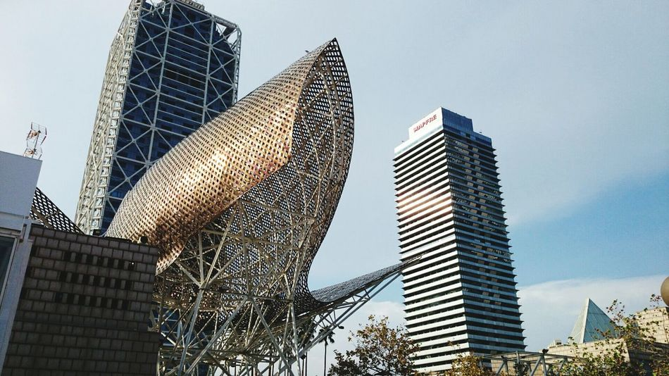 Barcelona Architecture Building Mesh Taking Photos Check This Out