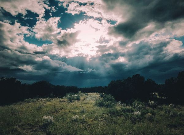 """""""The Chosen Way"""" I stumbled in the darkness, my path unclear, my direction a blur. A break in the clouds, in my subconscious as well. Divine brightness illuminated my path. I found my way once again and I shall follow the light to where it will lead. —Brad Hodges New Mexico Skies New Mexico New Mexico Photography Dramatic Sky Poetry & Photography Language Poetry In Pictures Poetry Sunbeam Sun Metaphorical Photography Divine Light  Trail Path Sky Cloud - Sky Scenics - Nature Landscape"""