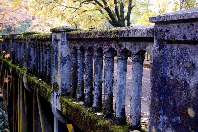 Architecture Bridge Day Moss & Lichen Moss Covered Concrete Outdoors Road Scenic Scenic View Spring Blue Wave