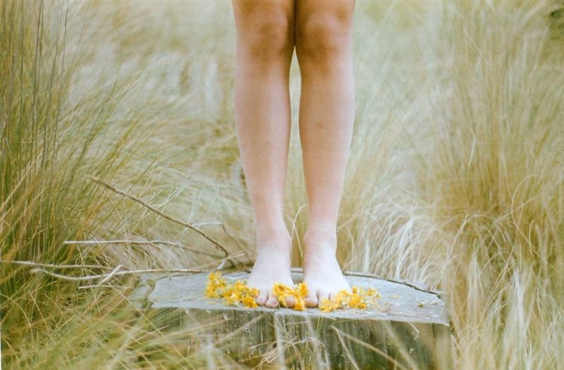 Human Legs On Tree Stump With Flowers
