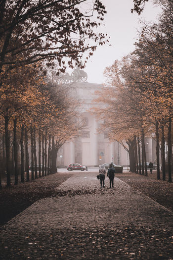 Autumn Herbst Adult Alley Architecture Change City Day Direction Footpath Full Length Lifestyles Men Nature Outdoors People Plant Real People Rear View Street The Way Forward Tree Treelined Walking Women