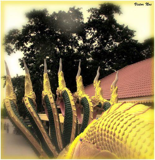 Victor Noc Art 🎱 La Collina Del Budda Thailandia 2015 VicNoc VictorNocArt Vittorio Nocente VittNoc Artfoto Pattaya City