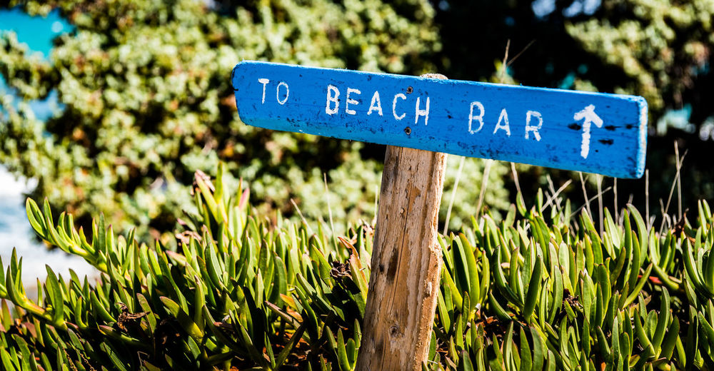 Beach Bar Arrow Symbol Blue Close-up Communication Day Field Focus On Foreground Grass Green Color Growth Guidance Information Information Sign Land Message Nature No People Outdoors Plant Sign Text Western Script