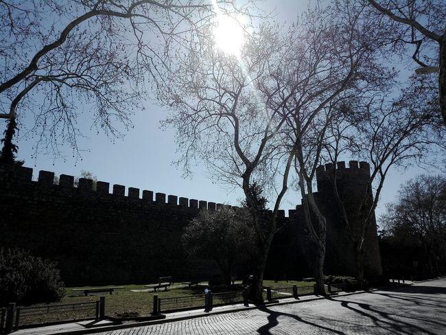 Sun Defensive Wall No People Day Shadow Street Silhouette Muralha Empedrado Rua Sombras Tree Sky