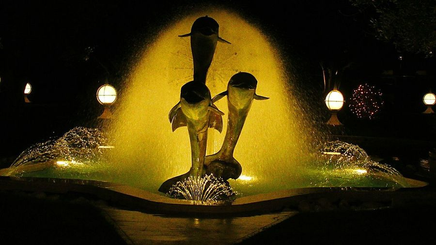 Dolphine Jumping Fountain Lights Fountain In The Dark Scenography Illuminated Water Silhouette