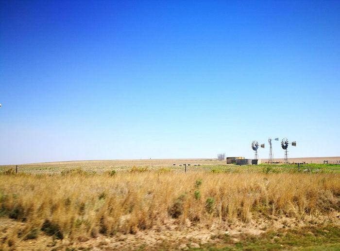EyeEmNewHere Blue Tranquility Nature Clear Sky No People Outdoors Landscape Tranquil Scene Grass Sky Scenics Day Agriculture Fields Of Gold South Africa Western Cape Windmills Hut Nowhere First Eyeem Photo