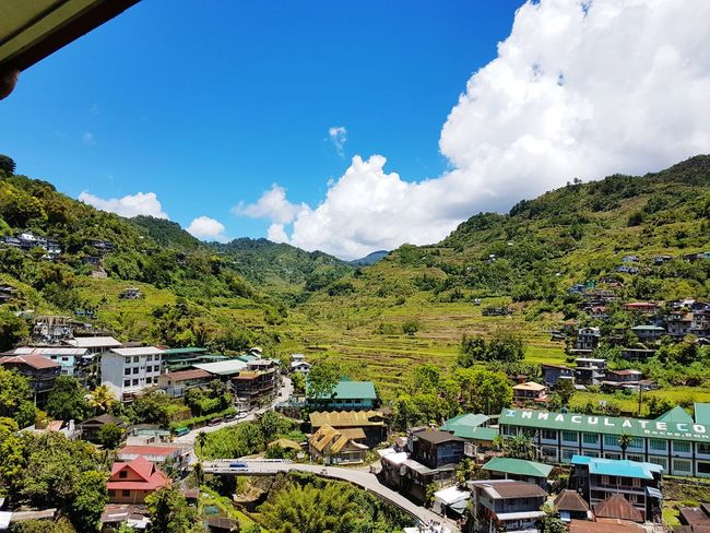 While enjoying my coffe I am so Happy to be able to Enjoy this view. I am Really looking forward at Exploring the Rice terace 😍😍 Rice Field Banaue Rice Terraces Philippines Green Manmade Tree Mountain Sky Cloud - Sky Landscape Scenics The Traveler - 2018 EyeEm Awards EyeEmNewHere