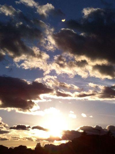 My Sky Loving Sun