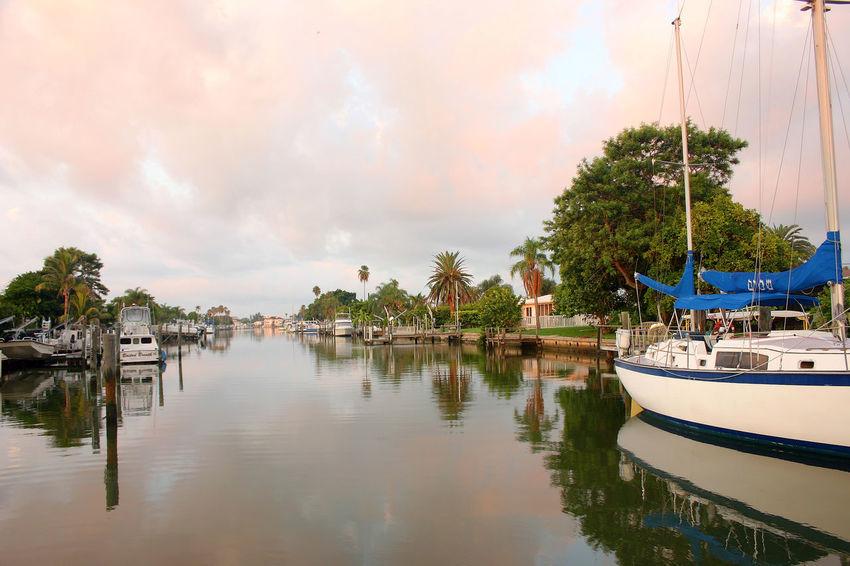 Boat Boga Ciega Bay Madeira Beach Florida Palm Tree Sailboat Saint Petersburg Florida Sky Tampa Bay Tranquil Scene Travel Destinations Tree Water