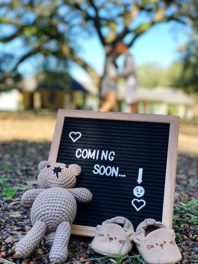 Coming soon Pregnancy Baby Pregnancy Announcement Text Western Script Communication Tree Focus On Foreground Day Park #NotYourCliche Love Letter