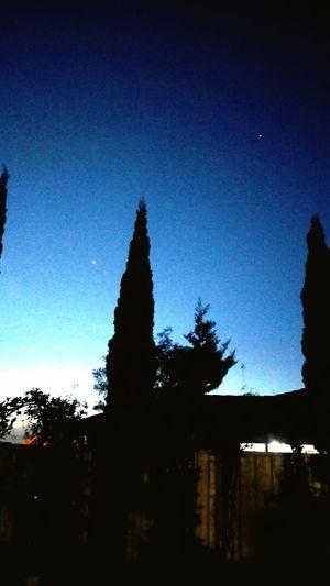 Stars Venus Afternoon