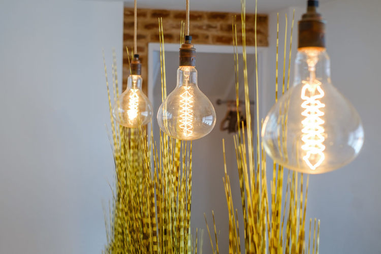 Low angle view of illuminated light bulbs hanging on glass