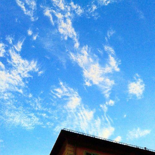 100happydays Day64 Crocetta state of mind. Crocetta Torino inTO like4like followme follow4follow tagsforlikes @tagsforlikes picoftheday vscocam vscofun torino turin italia italy art instaart cloud blue sky clouds nuvola nuvole sereno ciel cielo azzurro