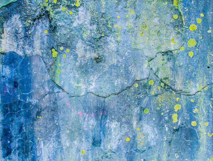 Abstract Pattern Backgrounds Biology Blue Botanical Close-up Lichen Lichen On Stone Mycology Natural Pattern Nature No People Pattern Textured  Textured Effect Weathered