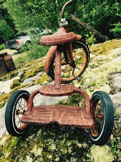 Colour Of Life Color Palette Aging Process Outside Focus On Foreground Weathered Tricycle Rusty Deterioration Maine Childhood The Past Nature Selective Focus CyclingUnites