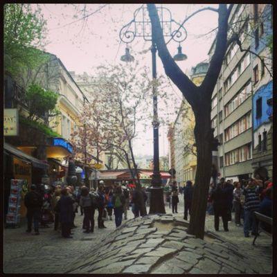 Picoftheday Instagramphoto Tagsforlike Likeforlike instagood instamood beautiful city Wien2013