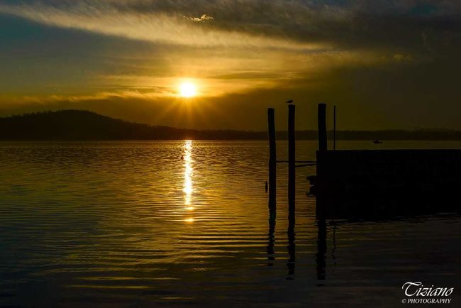 Only gold, Viverone, Italy Photo : Tiziano ©Photography Beauty In Nature Cloud - Sky Gold Harbour Lake Landscape Nature Reflection Seagull Sky Sun Sunset Tranquility Viverone's Lake Water