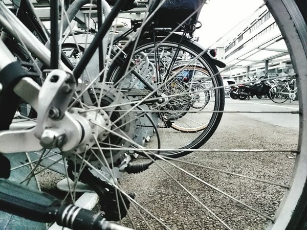 bicycles... Bicycles