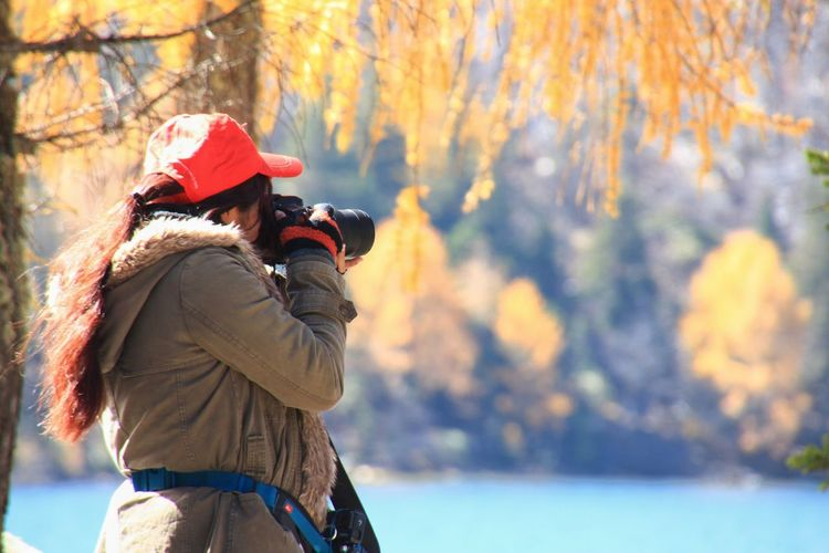 Tourist Branch Nature_collection Scenics - Nature Plant Lake Outdoors Travel Leaf Rearview Oneperson Real People Day Rural Scene Shooting Warm Clothing Tree Women Winter Forest Cold Temperature Water Leaf Autumn Red Autumn Collection Pine Woodland Pine Tree Pine Wood Change Leaves