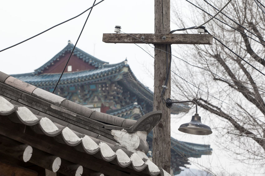 Architecture Building Exterior Built Structure Church Clear Sky Cultures Day Famous Place Famous Places Hanging Historic Place Korean Traditional Architecture Low Angle View Place Of Worship Religion Roof Sky Spirituality Temple - Building Tree