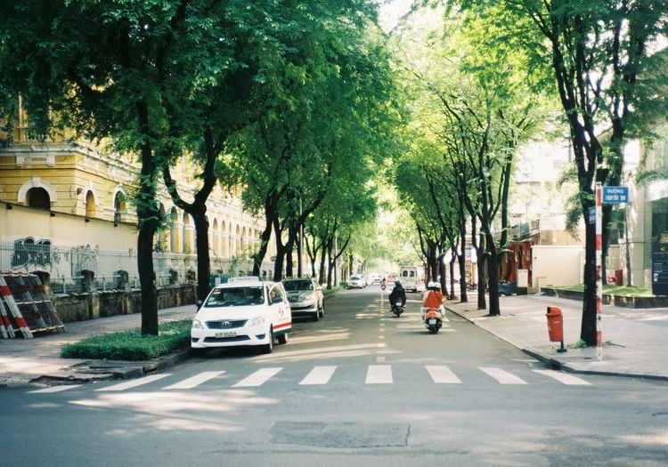 save green Film 35mm City Tree Land Vehicle Road Men Car Street Architecture Building Exterior
