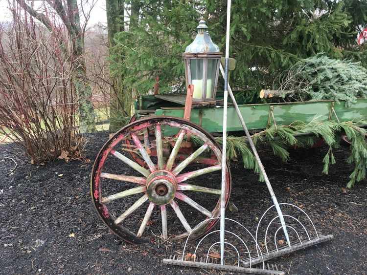 So rock me momma like a wagon wheel Wagon Wheel Tree Wheel Nature Plant Growth Old-fashioned No People Outdoors Day Beauty In Nature Cart Lieblingsteil