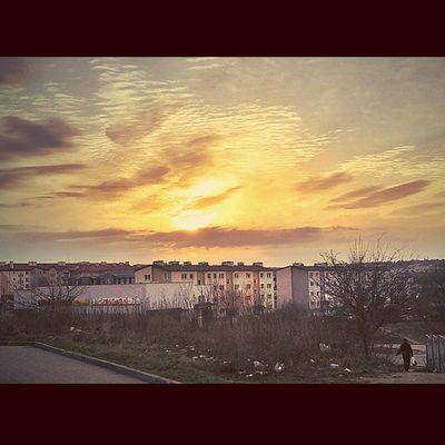 Raz jeszcze piękny gdanski zachód słońca :) Fotomagik Fotoremik Gdansk Igersgdansk Ilovegdn Ilovetrojmiasto My3miasto Mycity Tricity Trojmiasto 3city 3miasto Zkmgdansk Gdansk_official Tramwaj Tram