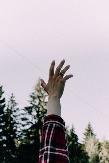 Low angle view of hands against tree against sky