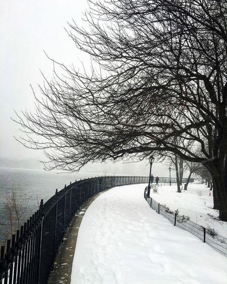 Storm Jonas Winterstormjonas Central Park Jackieonassisreservoir NYC