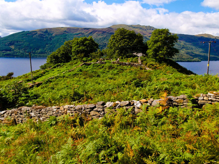 Scotland Animal Themes Beauty In Nature Ben Lomond Cloud - Sky Day Grass Green Color Landscape Mammal Mountain Nature No People Outdoors Scenics Sea Sky Tranquility Water
