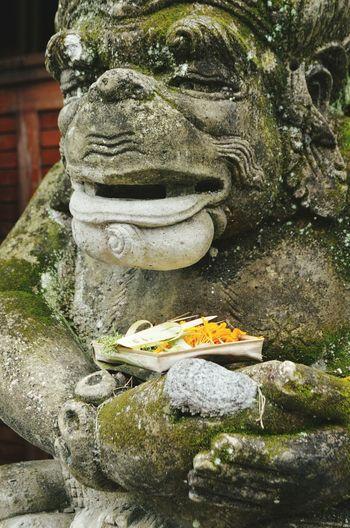Statue Rituals & Cultural Bali