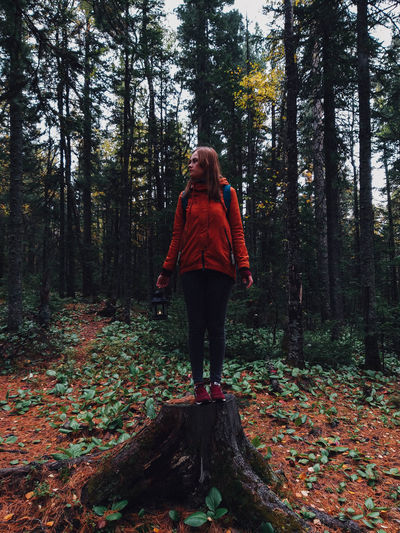 Woman standing on tree stump in forest