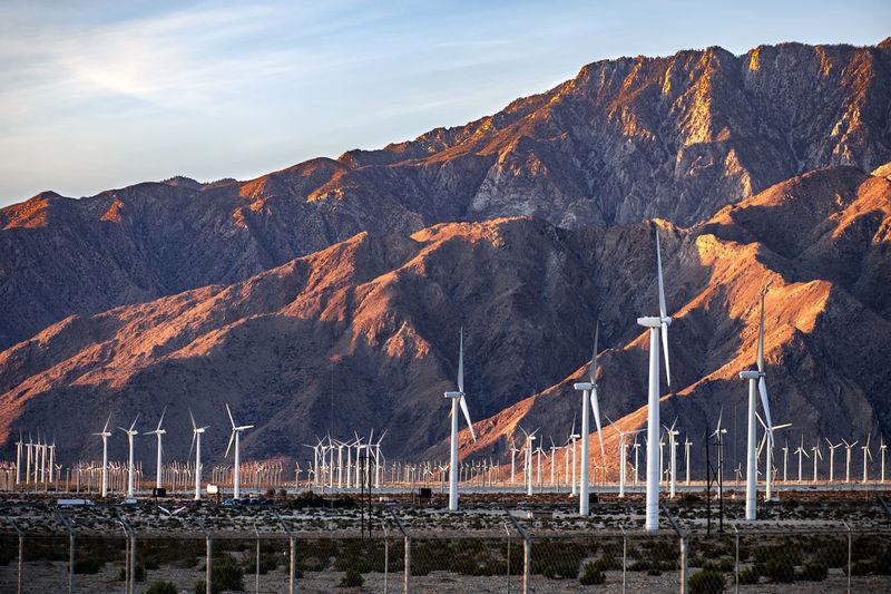 Huge desert wind farm with san jacinto mountain backdrop